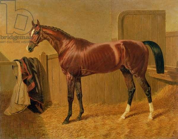 'Orlando', Winner of the Derby in 1844