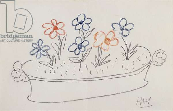 Some Flowers; Quelques Fleurs, (pencil and coloured crayons on paper)