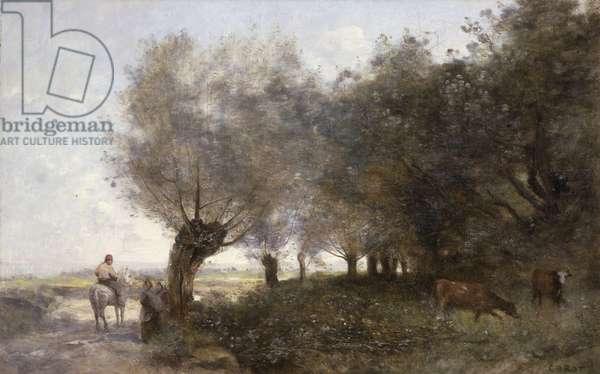 The Willows at La Pointe de L'Ile (oil on canvas)
