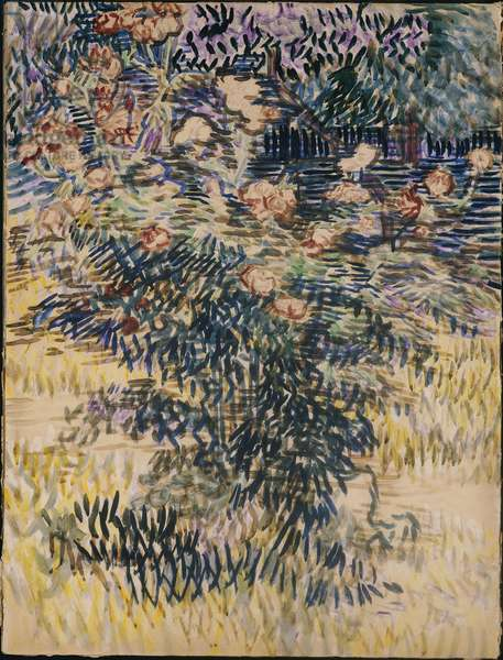 Oleanders, the Hospital Garden at Saint-Remy, 1889 (w/c & pencil on buff paper)