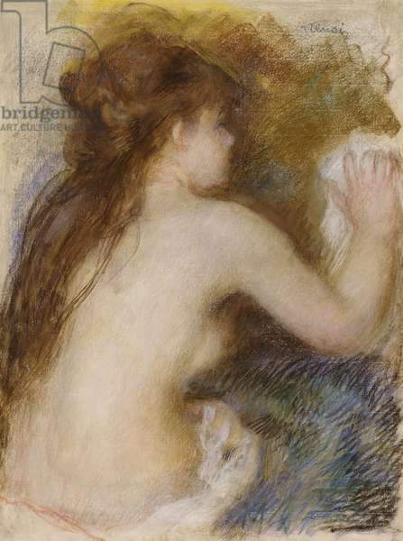 Rear view of a nude woman, c.1879 (pastel on paper)