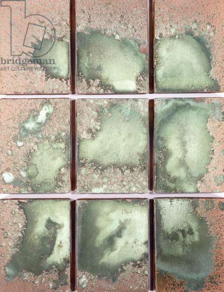 Oxidation Painting, 1978 (copper metallic pigment and urine on canvas)
