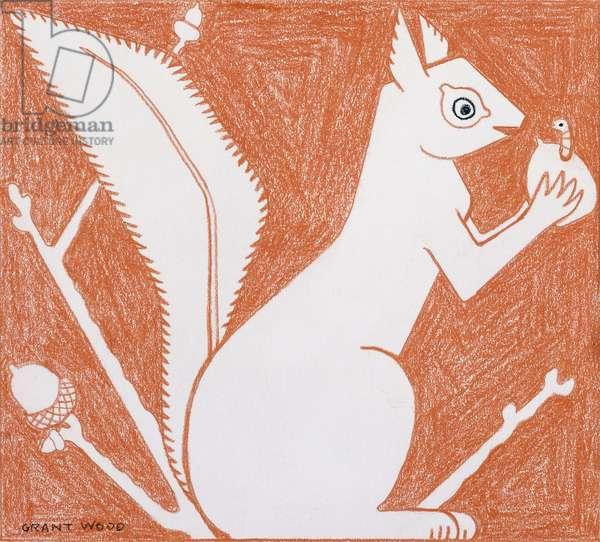Squirrel,  (coloured pencil on paper)