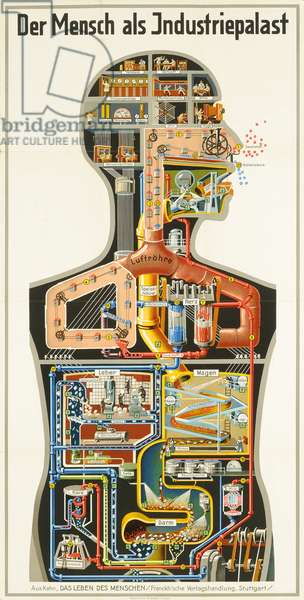 Man as Industrial Palace, 1926 (colour litho)