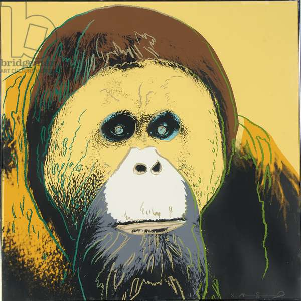 Orangutan, 1983 (screenprint)