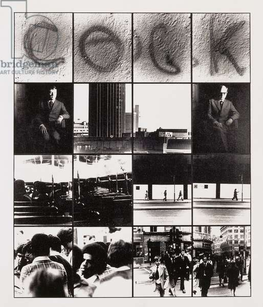 Cock, 1977 (16 black and white photographs in metal frames)