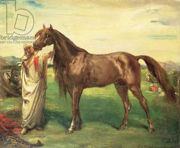 Hadji, an Arabian Stallion, 1853 (oil on panel)