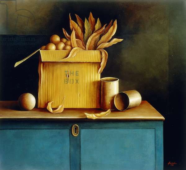 The Box, 1988 (oil on canvas)