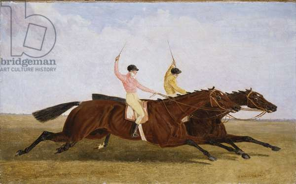 Satirist with William Scott Up Beating Coronation with John Day Up - The St. Leger 1841 (oil on canvas)