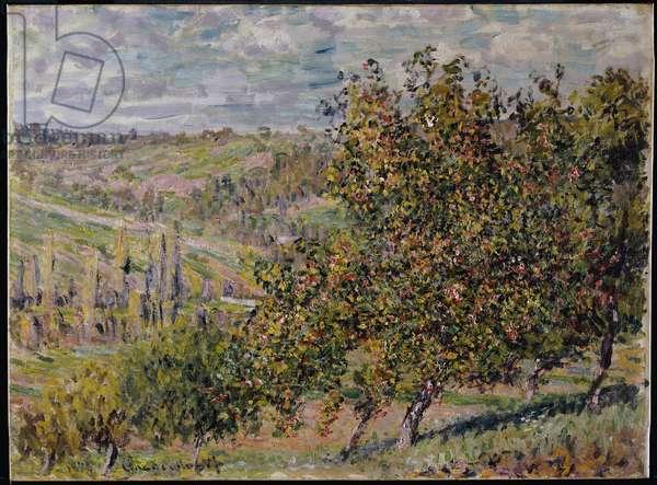 Apple Blossom, 1878 (oil on canvas)