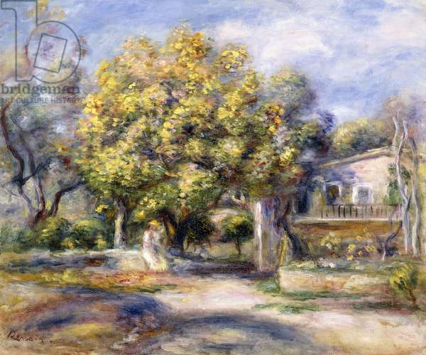 Houses in Cagnes, c.1905 (oil on canvas)