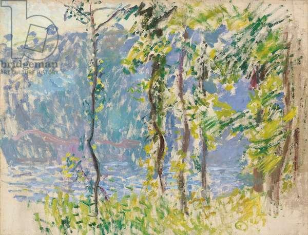 Paysage à Villez (oil on canvas)