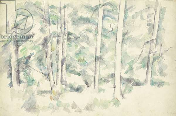 Forest, c.1890 (watercolour over pencil on paper)