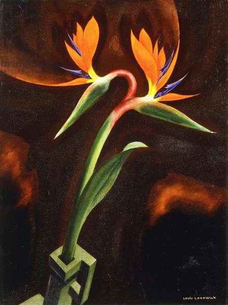 Bird of Paradise, 1929 (oil on canvas laid down on masonite)
