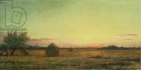Jersey Meadows (oil on canvas)