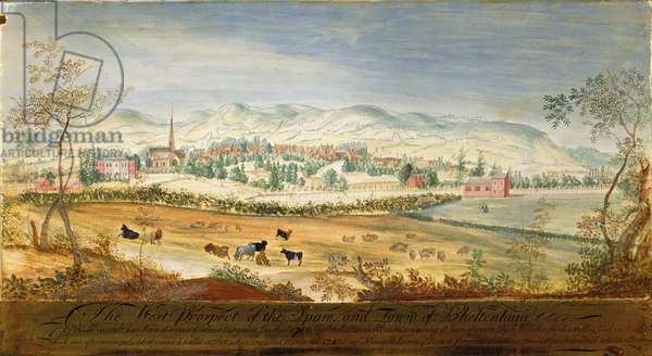 West Prospect of the Spa and Town of Cheltenham, 1748