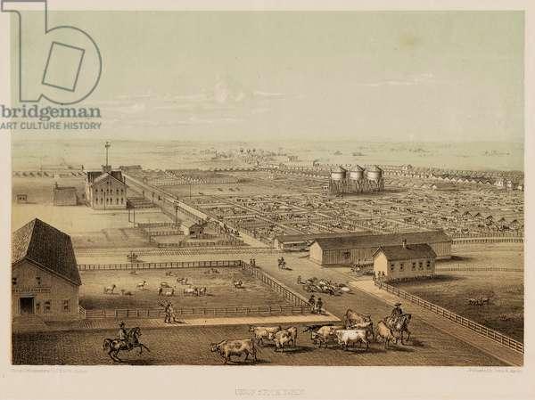 Union Stock Yard, Chicago, Illinois, 1865 (colour litho)