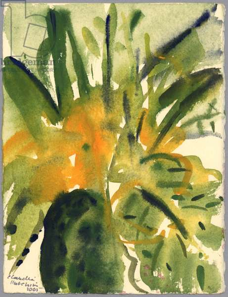 Primroses, 2005 (watercolour)