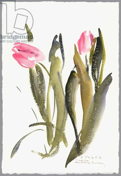 Tulips, 2003 (watercolour)