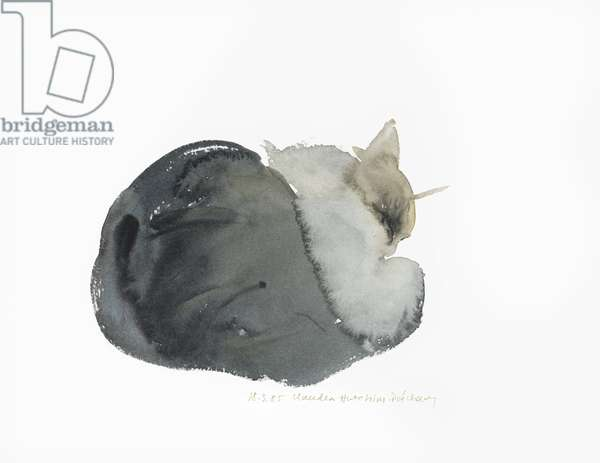 Sleeping cat, 1985 (watercolour)