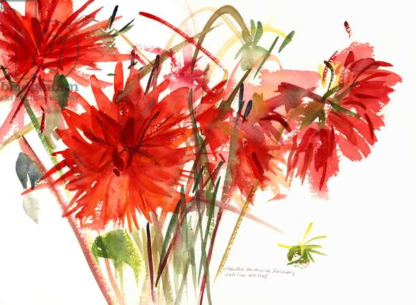 Dahlias, 2002 (watercolour)