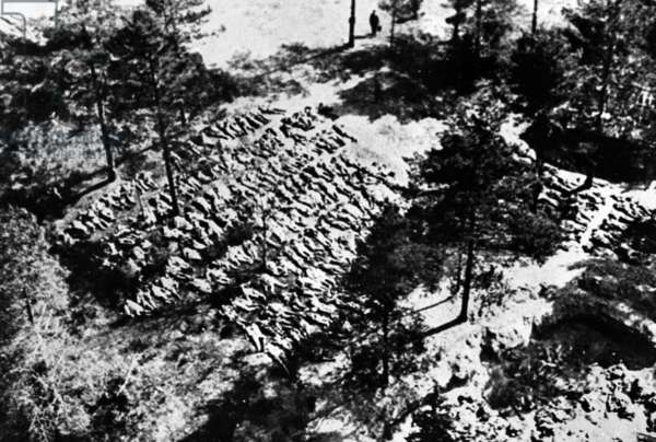 Aerial photograph of excavated bodies from the mass graves in Katyn Forest, 1943 (b/w photo)