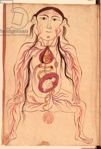 Ms Persan 151 Fol.32 Anatomical diagram of a woman and her foetus (vellum)