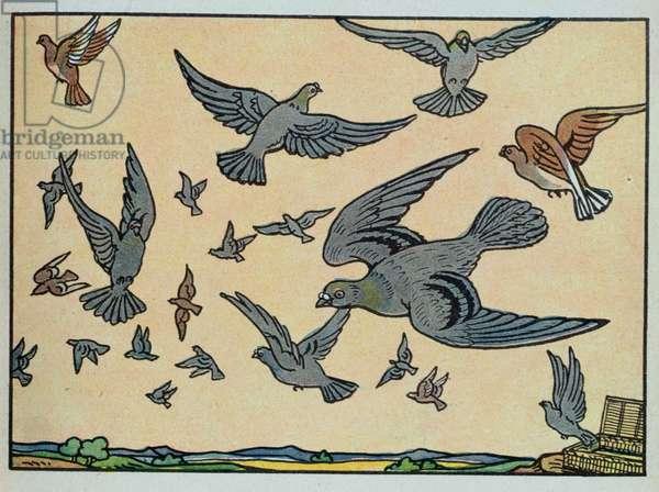 The Pigeon, illustration from 'Mon Premier Livre de Lecons de Choses', 1938 (colour litho)