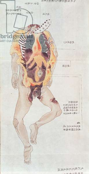 A disembowelled body from the dissection of a torture victim of 1796, from a makimono of a Midori doctor, 1842 (pen & ink and w/c on paper)