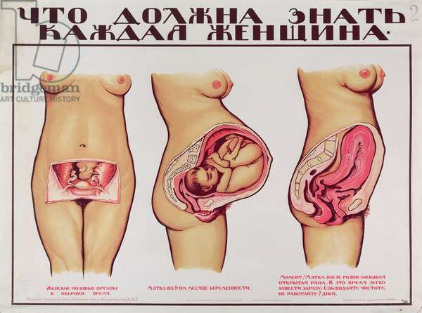 Soviet Poster depicting the pregnant woman, c.1925 (colour litho)