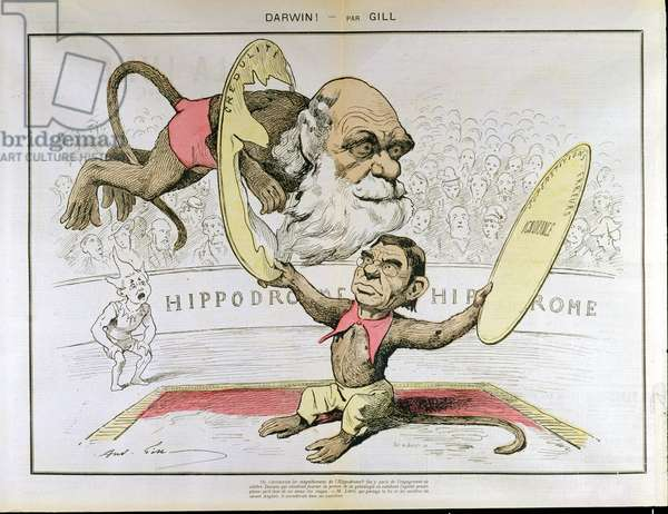 Caricature of Charles Darwin (1809-1882) and Emile Littre (1801-1881) depicting them as performing monkeys at a circus (colour litho)