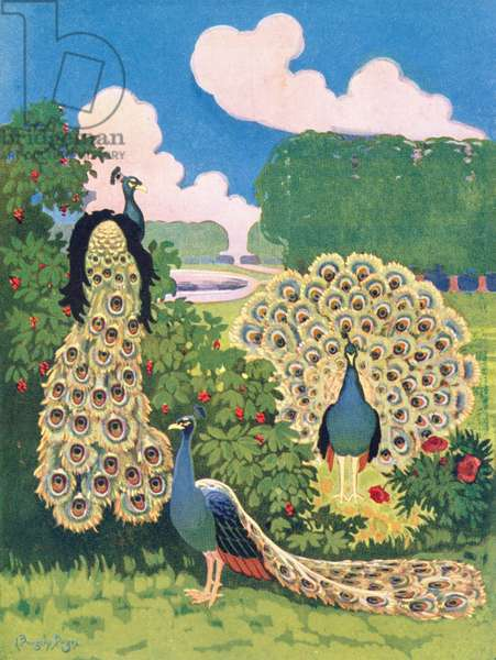 Peacocks, from a poster advertising a hat maker in London, 1926 (colour litho)