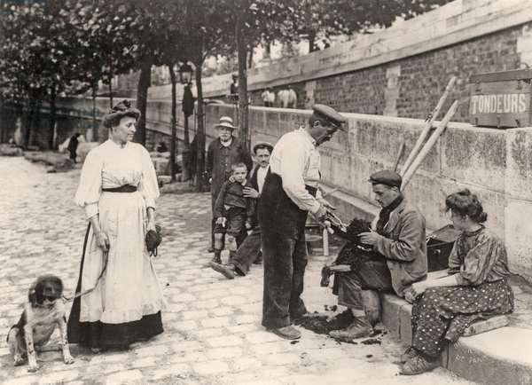 Dog grooming, Paris, c.1905 (b/w photo)