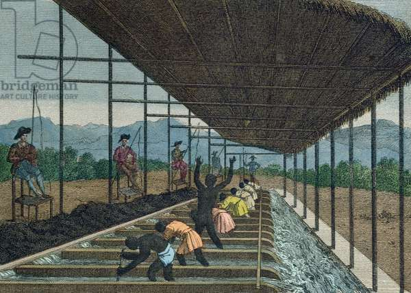 Slaves washing 'cascalho' as part of the diamond mining process in Brazil, 1811 (coloured engraving)