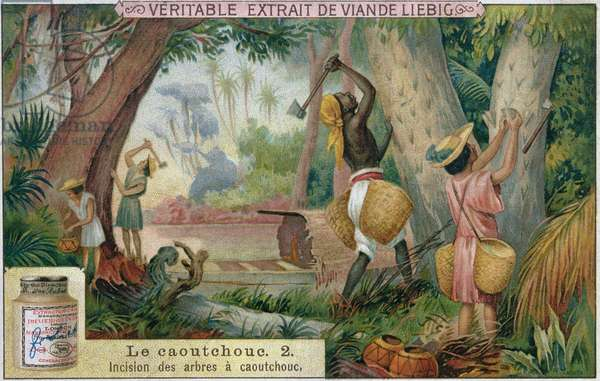 Tapping rubber trees, promotional advertising card for 'Veritable Extrait de Viande Liebig', late 19th century (colour litho)