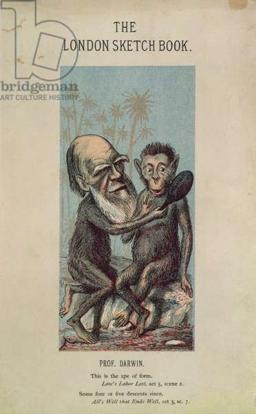 Cartoon of Darwin with an Ape, from 'The London Sketch Book', April 1874 Vol 1 No. 4 (colour litho)