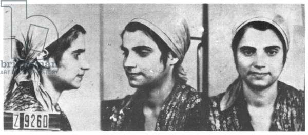 A Young Tzigane Girl prisoner in Auschwitz (b/w photo)