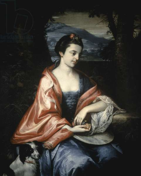 Ann Allen, later Mrs John Penn, August 1763 (oil on canvas)
