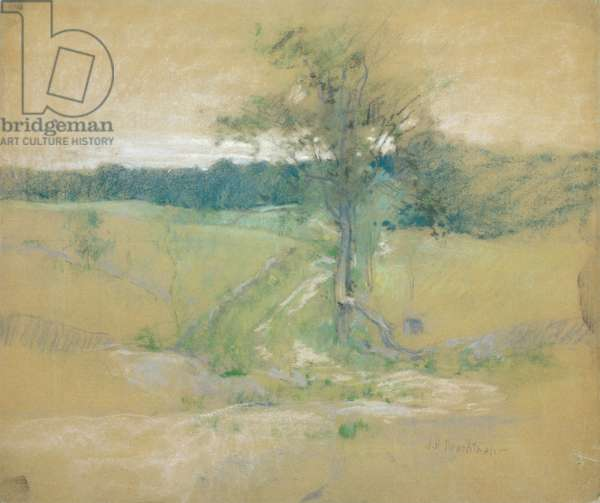 Tree by a Road, after 1889 (pastel on board)