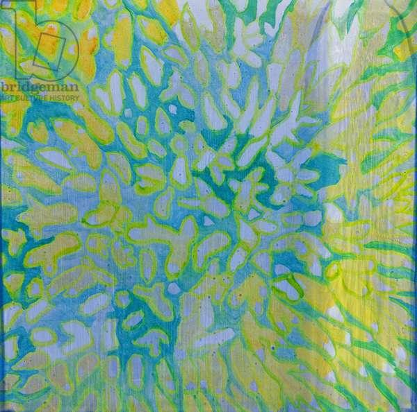 Acrapora, 2000 (oil on gesso)