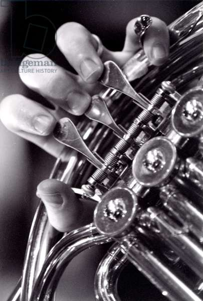 Detail of French horn