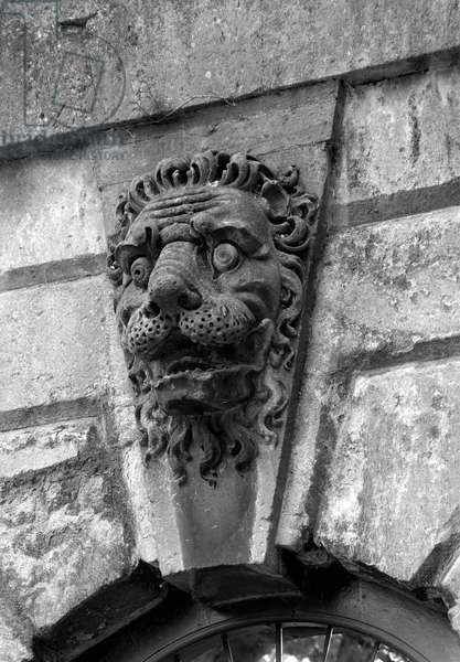 A stone lion above a window at Blenheim Palace, Oxfordshire, from 'The Country Houses of Sir John Vanbrugh' by Jeremy Musson, published 2008 (b/w photo)