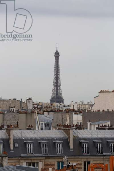 The Eiffel Tower, Paris, France (photo)