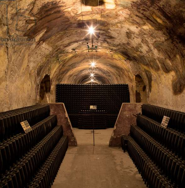 Cellar for Champagne production, Maison Mailly, Crayères, Mailly-Champagne, France (photo)