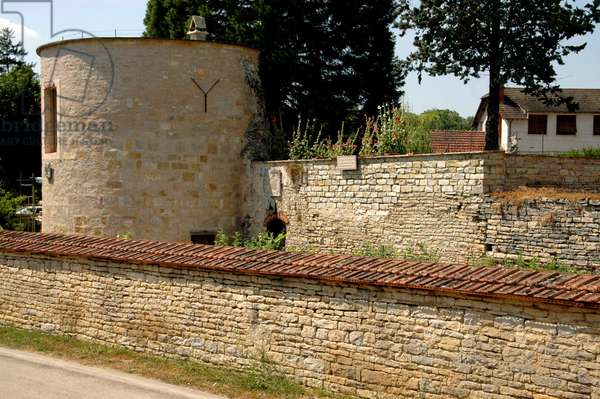 The fortifications and the defense tower of the walls of Walnut on serene (Yonne) dating from the 13th century.
