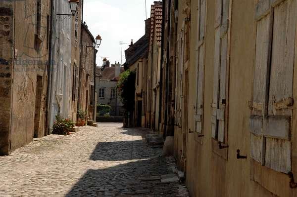 A walnut alley on serene (Yonne)