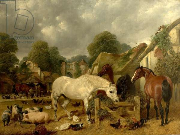 Horses in a Paddock (oil on canvas)