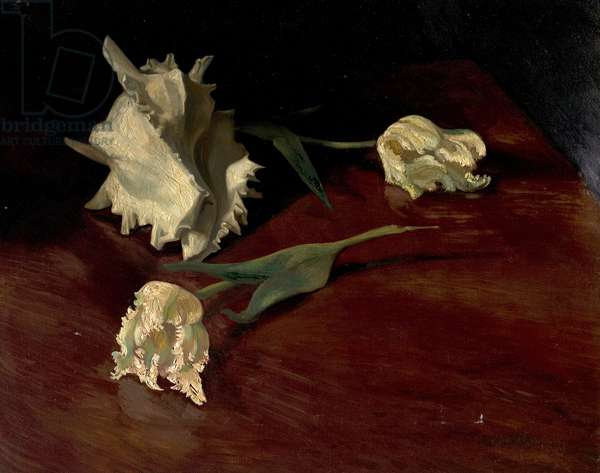 A Shell and Flowers, c.1944 (oil on canvas)