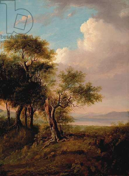 Landscape, Trees in the Foreground, Lake and Hills in the Distance (oil on canvas)