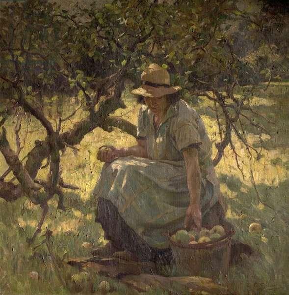 Apple Fallings (oil on canvas)
